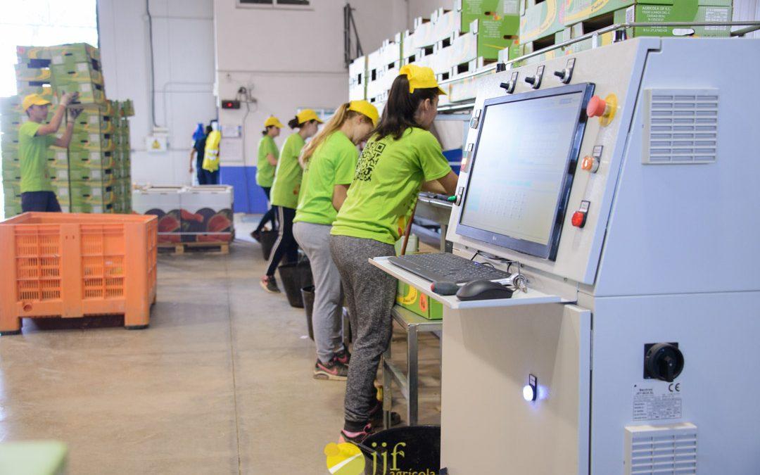 Agrícola JJF installs a new calibrator system